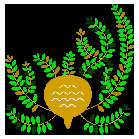 Planta Perú