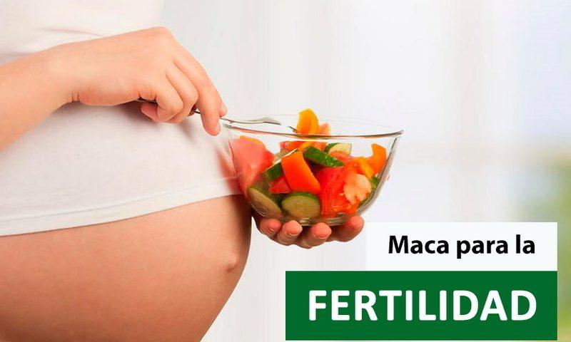 Maca fertilidad